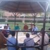 برگزاری سومین جلسه «قرارگاه آسمانی» انجمنیهای تربت حیدریه