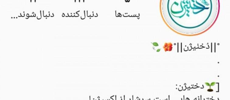 افتتاح صفحه اینستاگرامی«دختیژن» به مناسبت روز دختر